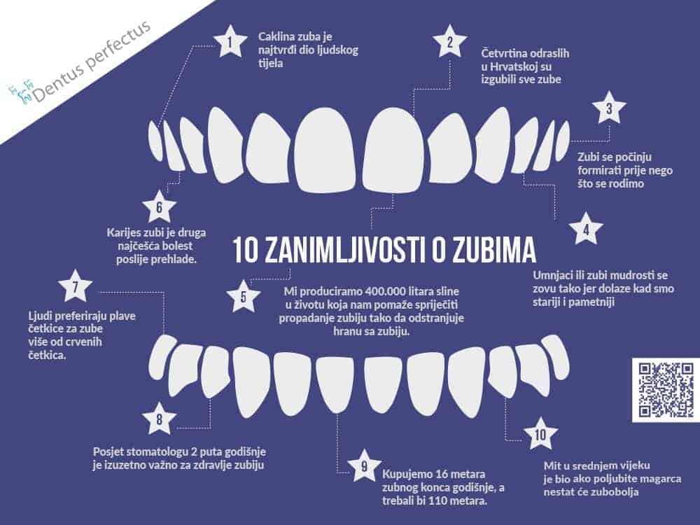 Dentus perfectus - zanimljivoati o zubima